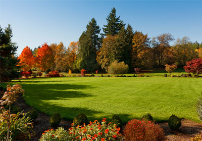 Fall Lawn Landscaping