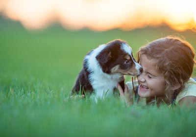 girl playing with puppy in yard