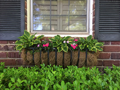 11 Easy Weekend Projects to Improve Curb Appeal