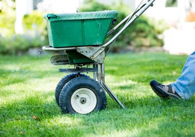 seeding-lawn