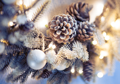 winter-wreath-pinecones