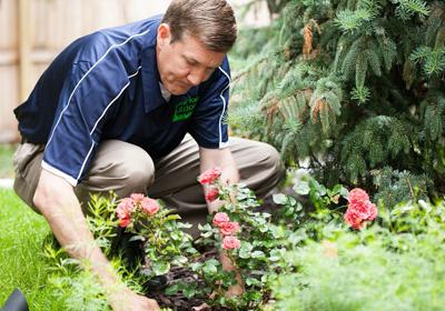 zaarly-expert-planting-flowers