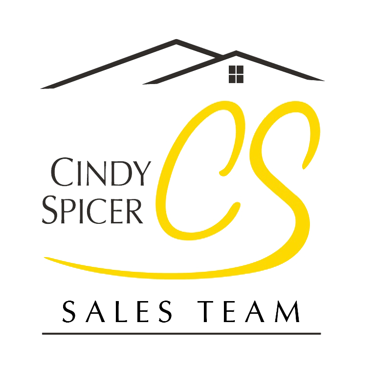 Cindy Spicer Sales Team